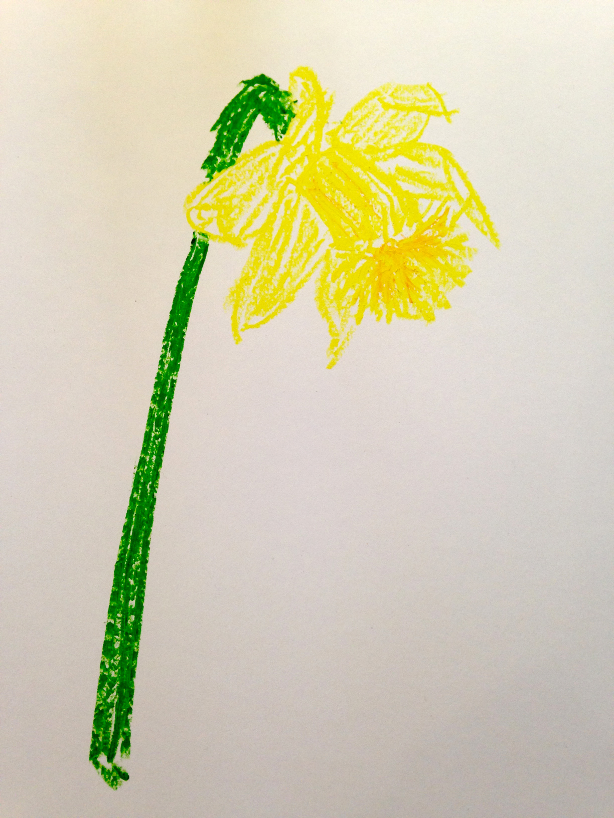Daffodil in pastels, Van Gogh style